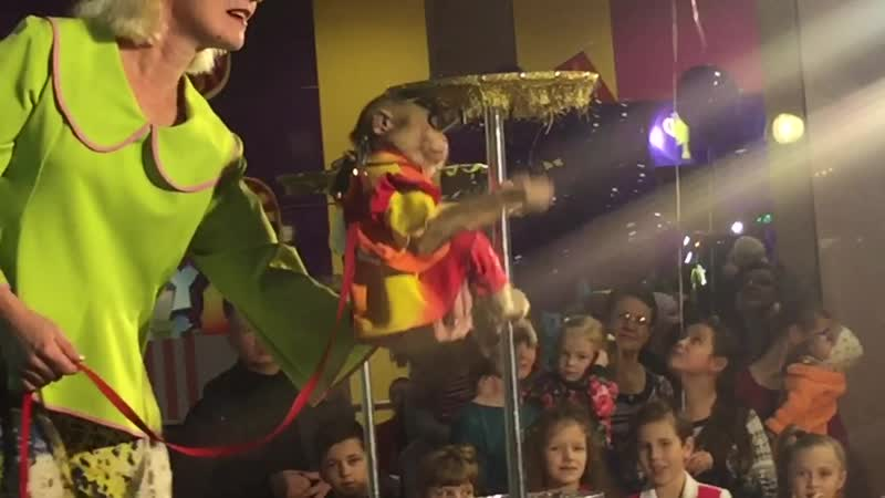 Парад Детства 2018