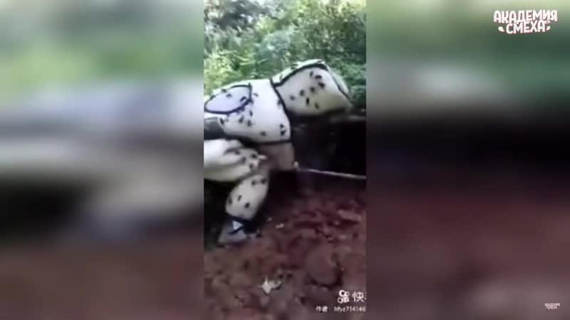 Rata tarata tarata ta ta