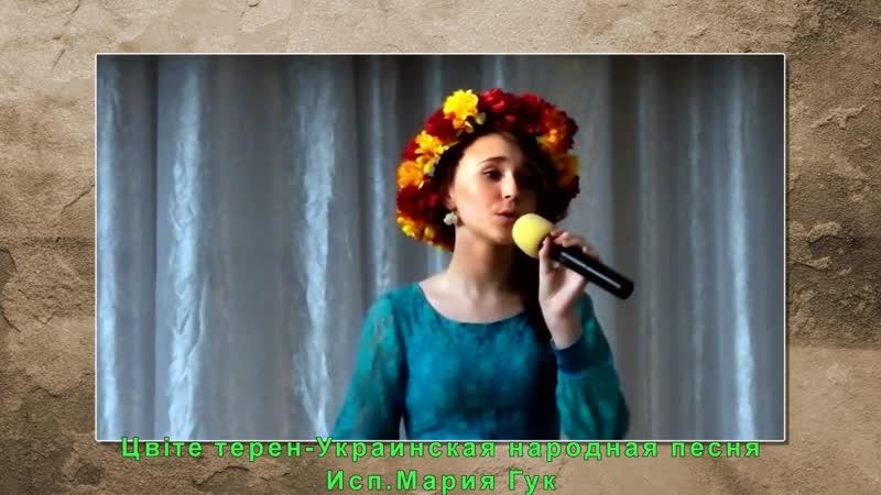 Украинская народная песня Цвiте терен Исполняет Мария Гук Оформление видео Валерия Воеводина