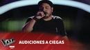 D. Lazarte -Mi historia entre tus dedos- G. Grignani - Audiciones a Ciegas - La Voz Argentina 2018