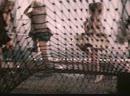 Что такое кенгуру Пеппи Длинный Чулок