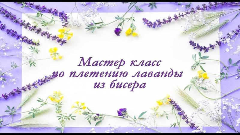 Лаванда из бисера. Часть 1. lavender from beads