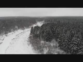 Dji Mavic Air - Новогодний Лес Смоленщины