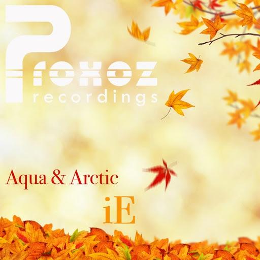 AQUA альбом iE