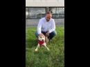 Мой друг, замечательный человек, автор и ведущий программы Планета Собак Григорий Манев поддерживает проект Красная повязка, д