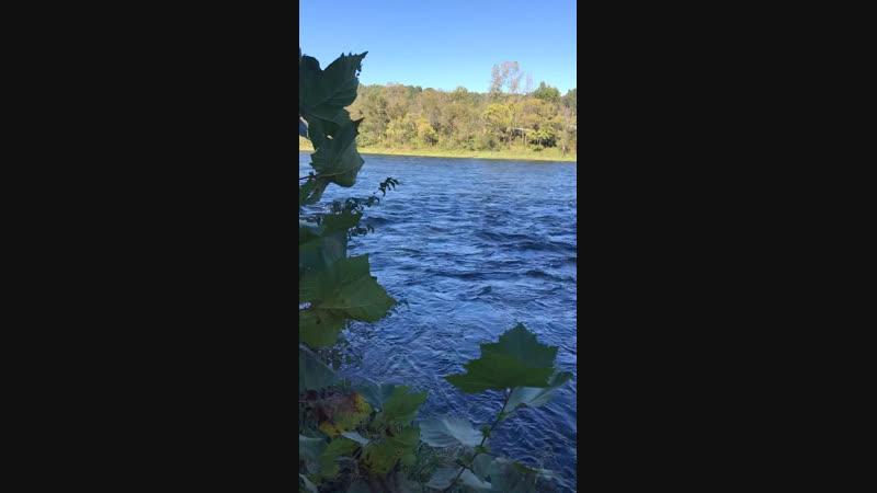 Bull Sholes Dam