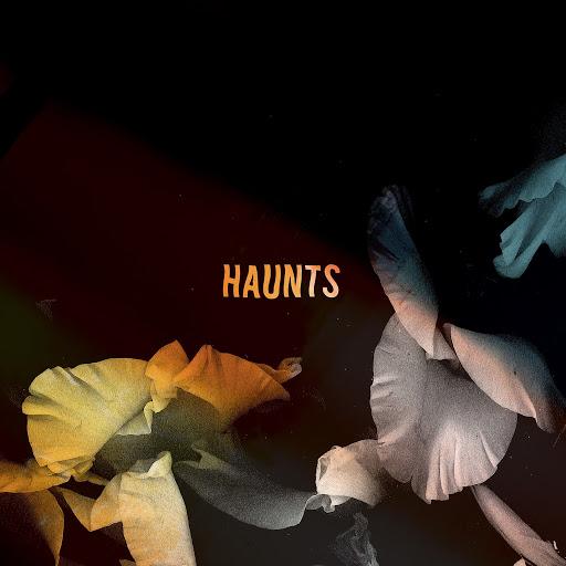 Bearcubs альбом Haunts