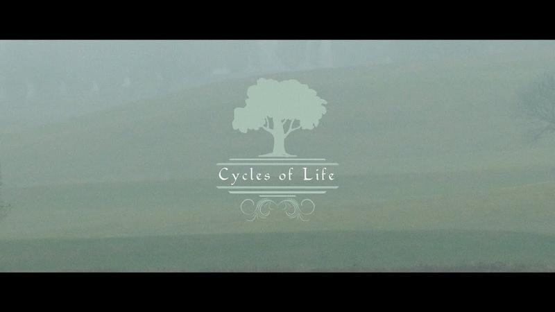 Estas Tonne Cycles of Life @ Chantevent Switzerland