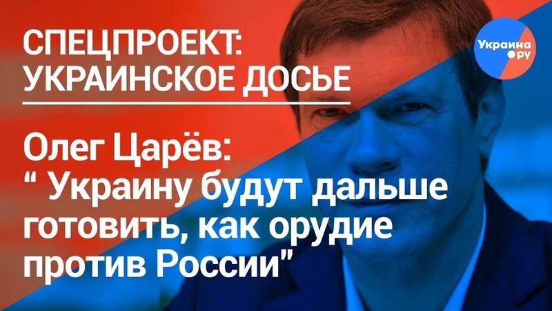 Олег Царёв Украину будут дальше готовить, как орудие против России