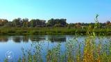 Река, звуки природы, русло, пение птиц, релакс, природа, медитация. На деревне у бабушки.