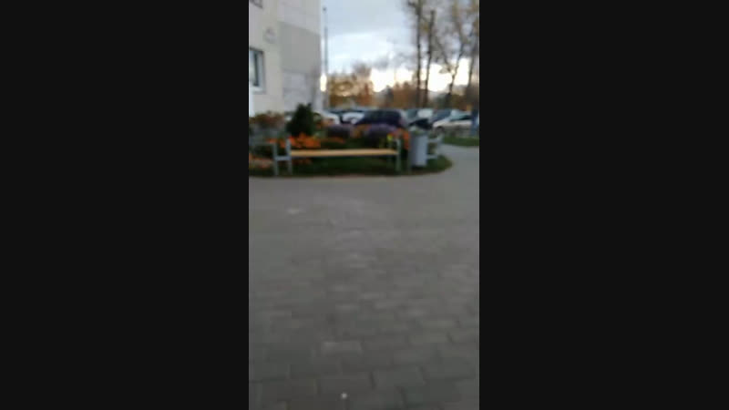 Кирилл Щетко - Live