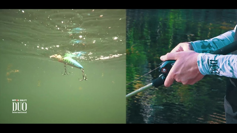 Lure Masterclass Realis FangPop How To