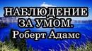 НАБЛЮДЕНИЕ ЗА УМОМ. Роберт Адамс