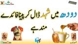 honey milk milk with honey benefits benefits milk with honey honey honey benefits