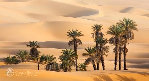 Поэтика ливийской Сахары. А завтра была война.. Часть 2
