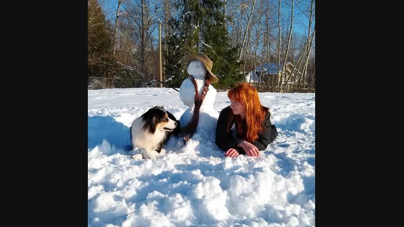 Собака лепит снеговика вместе со своей хозяйкой