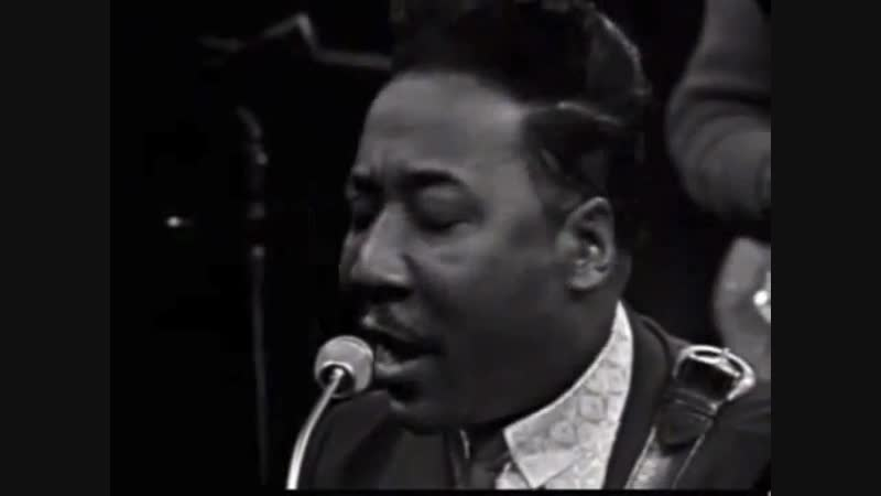 Muddy Waters - You Can't Lose What You Never Had