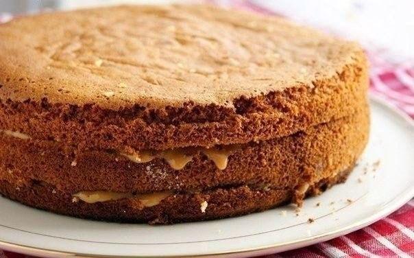 Вкусный нежный медовый бисквит.