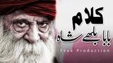 Baba Bulleh Shah Kalam punjabi sikh chaj koi yaar manawan da Sami Kanwal Fsee Writes