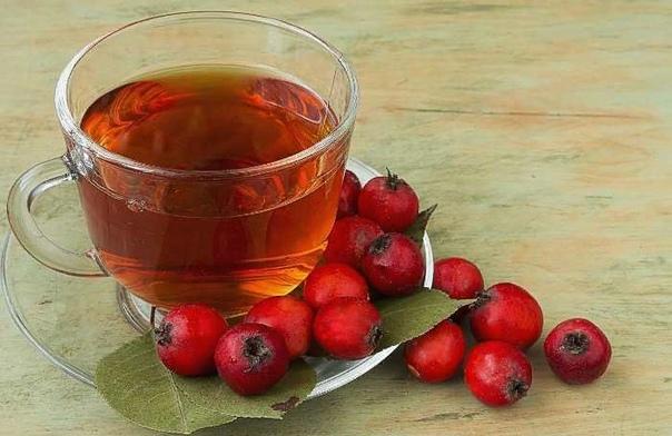 Чай из плодов боярышника: правила употребления