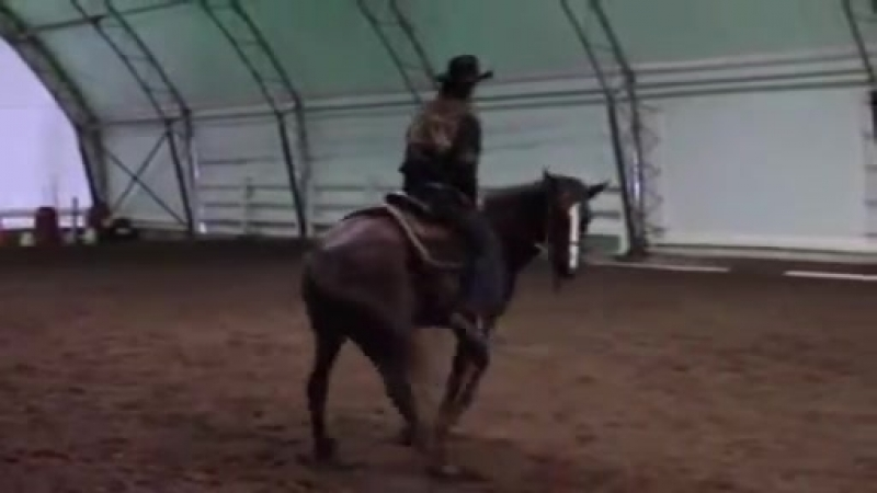 How_to_stop_a_horse_from_bucking_Part_1_with_Mike_Hughes__Auburn_California.mp4