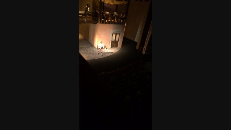 «Слуга двух господ» в Малом театре.