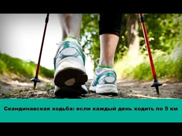 Скандинавская ходьба что будет с Вашим телом, если каждый день ходить по 5 км и более