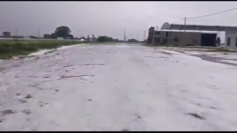 Terrible pedrada esta mañana en Saladillo Prov. Bs. As. 10cm de Granizo campo