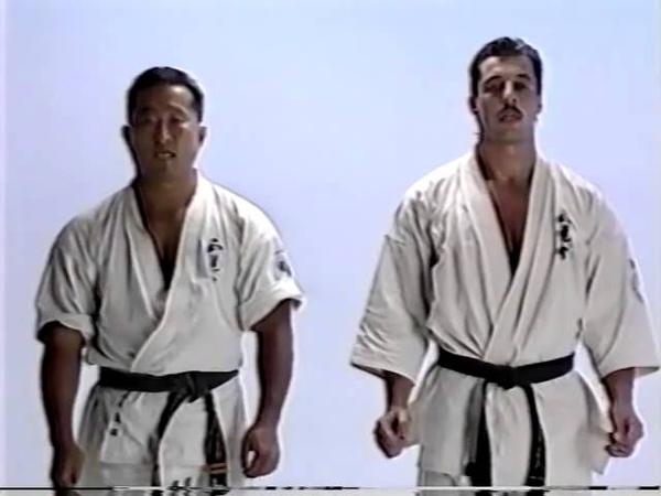 Andy Hug, Kyokushin Karate Kumite Techniques