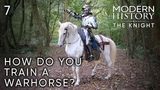 Part 7 Horses How Do You Train a Warhorse