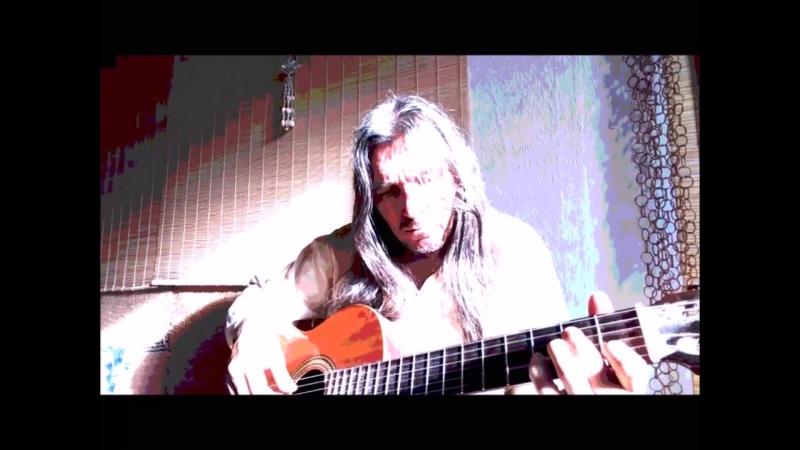 Dragonfly - Michael Lotus