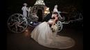 Jeff and Melaina Brills Disneyland Wedding Highlights