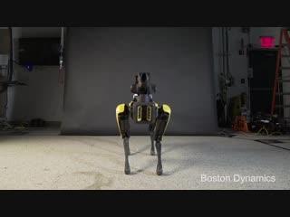 Роботы Boston Dynamics