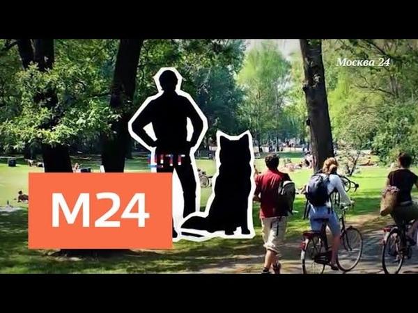 Москва с акцентом: Крис Хелмбрехт - Москва 24