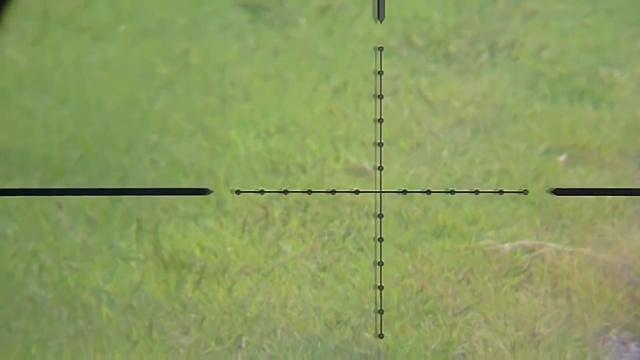 Охота на сусликов с PCP пневматикой