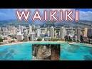 Котик Вилли и пляж на Гавайях
