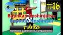 16 TAISO - Комплекс разминочных упражнений (Bujinkan Goshinjutsu Hapkido Hoshinsul 2019)