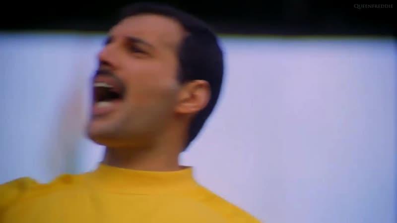 Игорь Криушенко празднует с фанатами выход в плей-офф Лиги Наций » Freewka.com - Смотреть онлайн в хорощем качестве