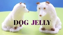 How To Jelly I Dog Jelly! How to make Dog Eating Jelly with Coconut Milk