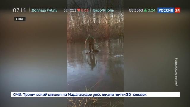 Новости на Россия 24 • Спасение оленя из ледового плена