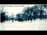 Sleigh Riding, Central Park.