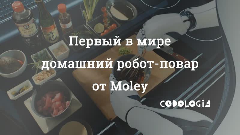 Первый в мире робот-повар MOLEY