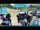 Чемпионат в Форт Пинта 1 место Star Stable Online 02 09 17