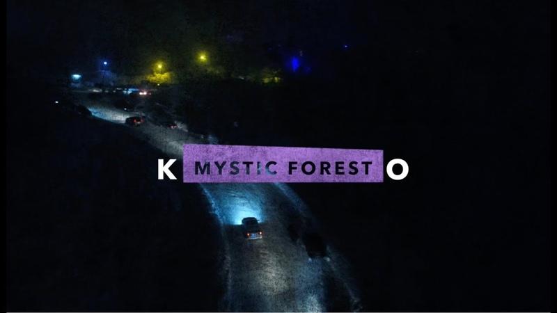 Таинственный лес | Mystic forest 4к
