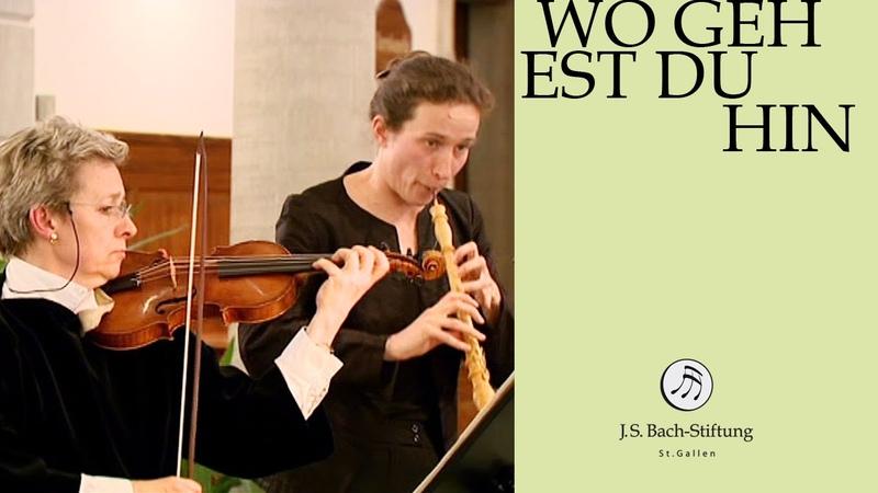 J S Bach Cantata BWV 166 Wo gehest du hin 2 Aria J S Bach Foundation