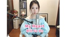My Heart Will Go On - Feng Timo cover