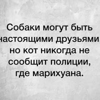 Анкета Maxim  Olegovich