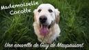 Livre audio : Mademoiselle Cocotte, Guy de Maupassant
