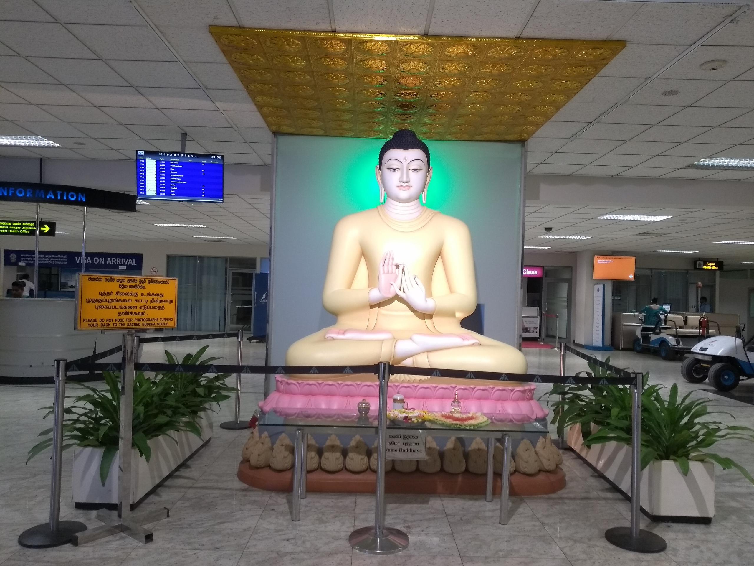 Шри Ланка (фото) - Страница 11 JTsZP5IQAyE