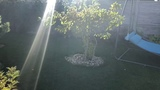 Мой сад сентябрь -октябрь